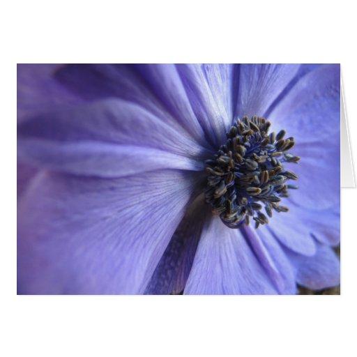 Anenome azul - feliz cumpleaños tarjeta de felicitación