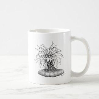 Anenome plumoso taza de café