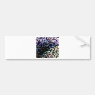 Anenomes verdes y púrpuras pegatina para auto
