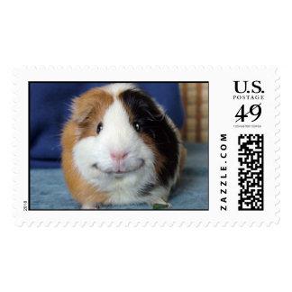 Angeelo Postage Stamp