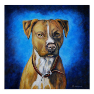 Angel American Staffordshire Terrier Dog Art Poster