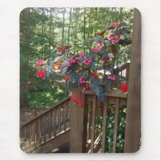 Angel Begonia on Wooden Stairs with Woods Behind Mouse Pad