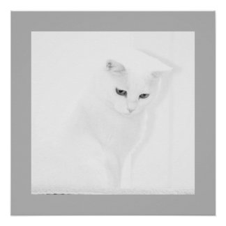 Angel Cat Poster