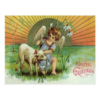 Angel Cherub Sun Lamb Sheep Postcard