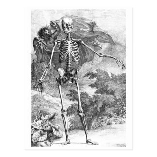 Angel covering a standing skeleton postcard