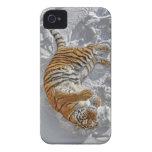 Ángel de la nieve del tigre iPhone 4 coberturas