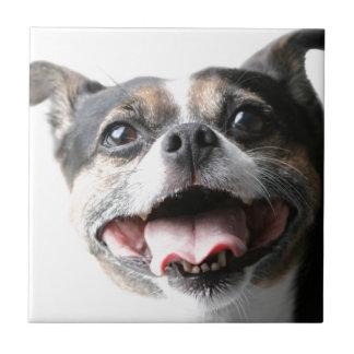 Ángel de un perrito del Mutt - raza mezclada - col Azulejo Cerámica