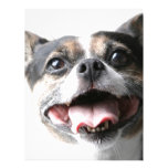 Ángel de un perrito del Mutt - raza mezclada - col Membretes Personalizados