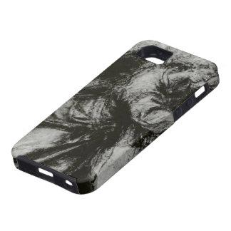Ángel del anuncio de Guido Reni iPhone 5 Coberturas