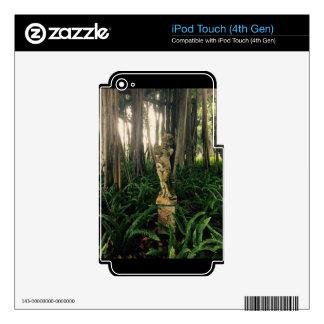 Ángel del helecho calcomanía para iPod touch 4G