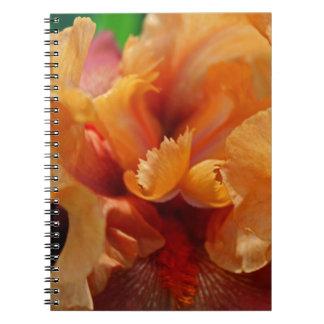 Ángel desviado notebook