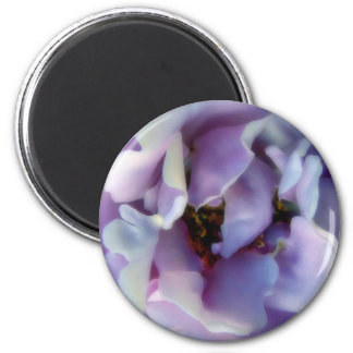 Angel Face Rose 2 Inch Round Magnet
