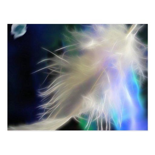 Angel Feather, postcard
