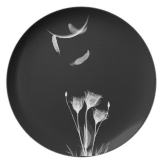 angel feathers and white flower plate