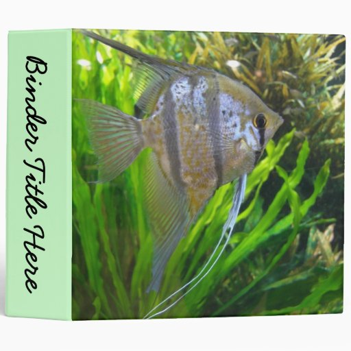 "Angel Fish 2"" Binder"
