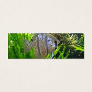 Angel Fish Bookmark Mini Business Card