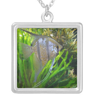 Angel Fish Necklace