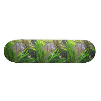 Angel Fish Skateboard