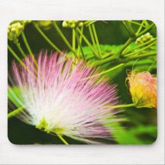 Angel Hair Mimosa Mouse Pad