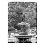 Angel in Central Park Card