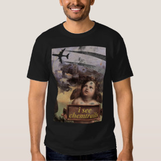 Angel in Madonna of Foligno sees chemtrails Tee Shirt