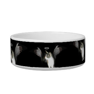 Angel Kitten Cat Bowl