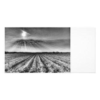 Angel Light Farm Card