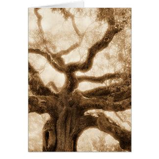"""Angel Oak  2"" - MW1107 Card"