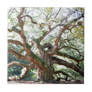 Angel Oak Tree Gifts Ceramic Tile