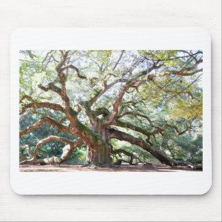 Angel Oak Tree Gifts Mouse Pad