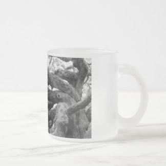 Angel Oak Tree glass mug