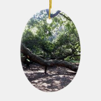 Angel Oak Tree Limbs Ceramic Ornament