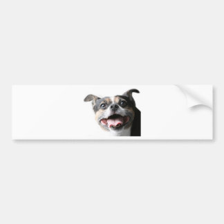 Angel of a Mutt Doggy - Mixed Breed - Canine Bumper Sticker