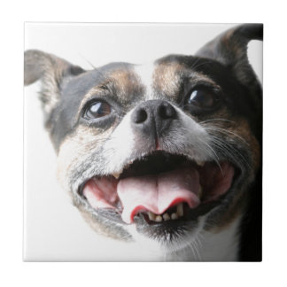 Angel of a Mutt Doggy - Mixed Breed - Canine Tile