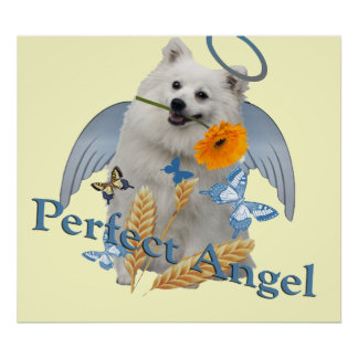 Ángel perfecto del Keeshond Posters