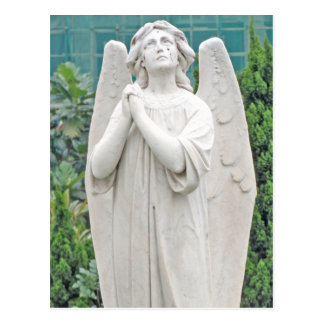 Angel pleading with the sky postcard