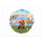 Angel Star-Yorkshire Terrier (#7) Post Cards