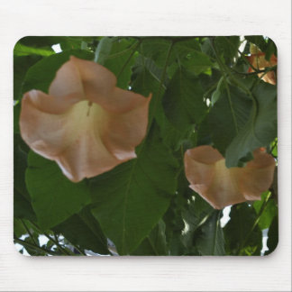 Angel Trumpet Flowers Mouse Pad