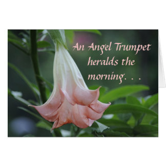 Angel Trumpet heralds the morning Card