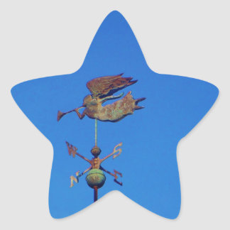Angel Weather Vane Bright Blue Sky Star Stickers