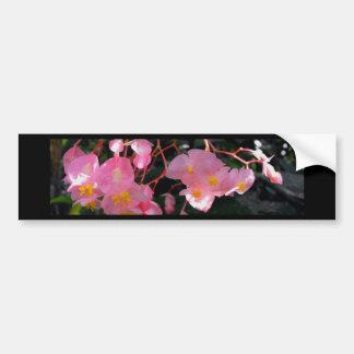 Angel Wing Begonias Bumper Sticker