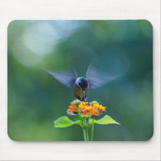 Angel Wings Humming Mouse Pad