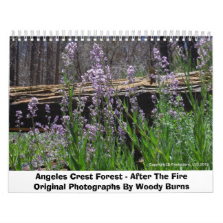 Angeles Crest Forest - After The Fire Calendar
