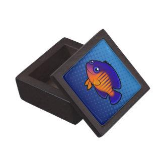 Angelfish 1 del dibujo animado caja de regalo de calidad
