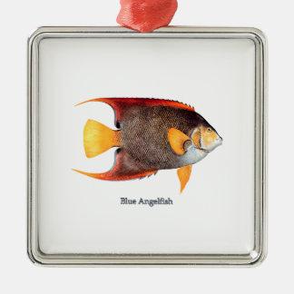 Angelfish azul (agua salada) adorno cuadrado plateado