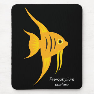 Angelfish_Bold and Beautiful on Black Mouse Pad