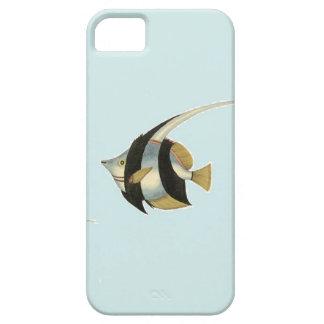 Angelfish iPhone 5 Case