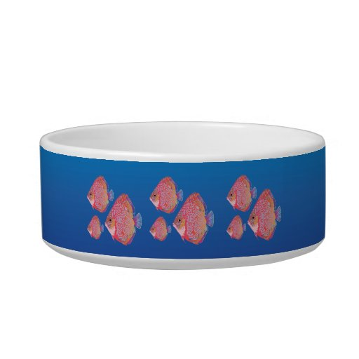 Angelfish Cat Water Bowls