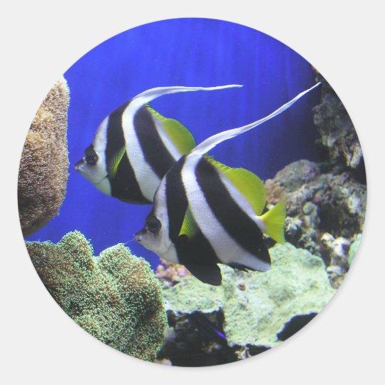 Angelfish Classic Round Sticker