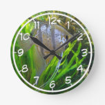 Angelfish Clocks